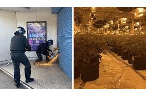 UK: Arrests as £2.2m cannabis farm found in Doncaster raid