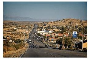 California: Deputies Seize Nearly 4,000 Marijuana Plants In Twentynine Palms Area