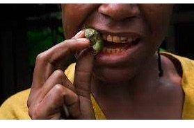 Pakistan Coast Guard  arrests 17, seizes 81Kg hash &  34,747-kg of betel nuts !