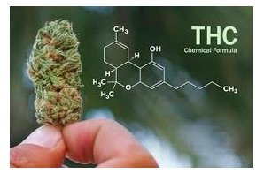 Price per milligram of THC declining in cannabis-infused products says MJ Biz article