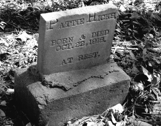 Grave at Friendship Chapel Cemetery