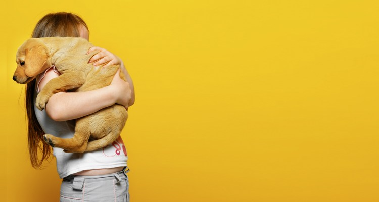 girl-holding-puppy-yellow-back