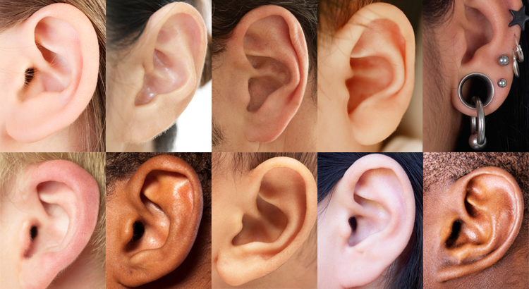ear-collage
