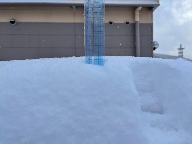 約5cmの積雪(2021年1月9日午前8時時点)