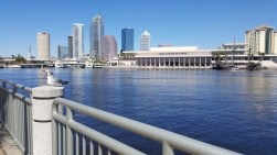 Part of the view from Tampa General
