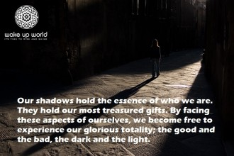 """INNER ACTIVISM - Ensuring """"We"""" Don't Become """"Them"""" - the shadow within 1"""