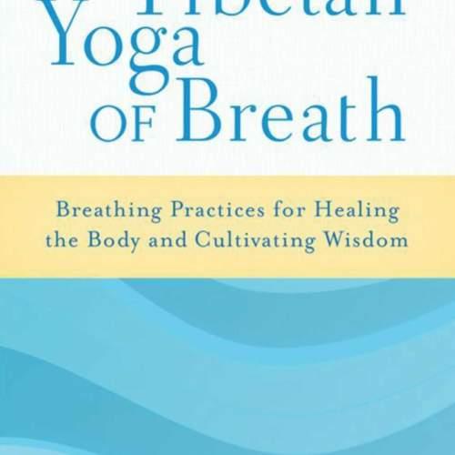 Yoga Breathing Exercises & Guided Analytical Meditations