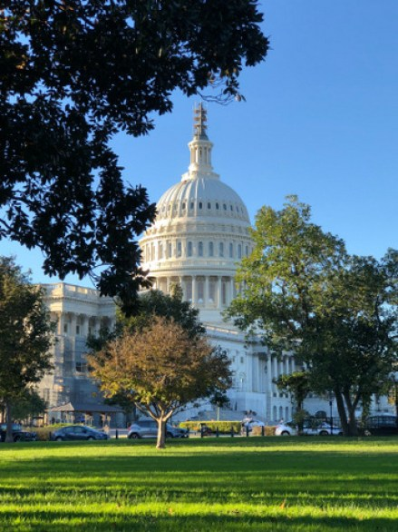 top parks and gardens of Washington DC