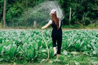 gardening as a hobby