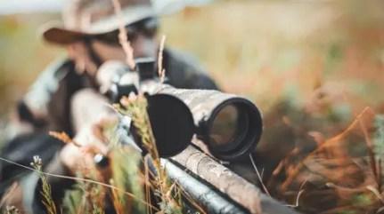 hunting-hunter hunt