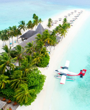 travel tropical