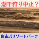 住吉浜リゾートパークの潮干狩りが中止なのかを紹介する画像