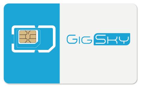 GigSkySIMカード画像