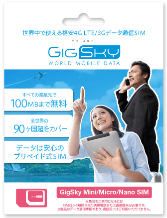 GigSkySIMパッケージ画像