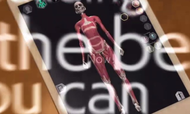 3dbodylaboアプリデータ筋肉