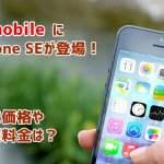 iPhone SEがワイモバイル(Y!mobile)に登場!価格や料金は?