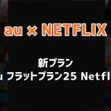 au フラットプラン25 Netflix トップ画像