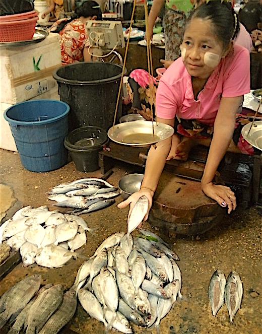 ミャンマーのタンリンゼー