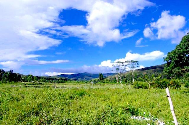 ラメラウ山