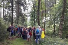 06.08.2016 - die Baumkletterer stellen sich vor