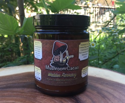 Mushroom Cacao