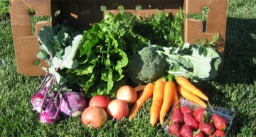 Garden Didn't Take This Year? Here's How To Join a CSA!
