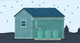Rainwater Harvesting: Why Everyone Should Care and How to Do It