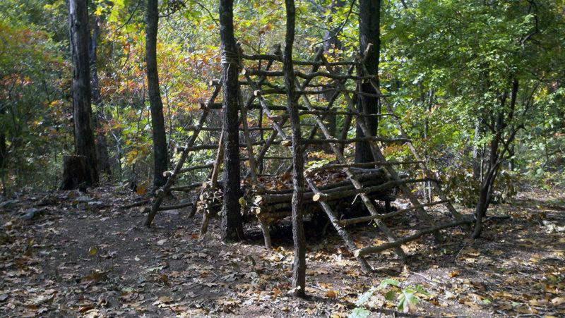 A-frame shelter