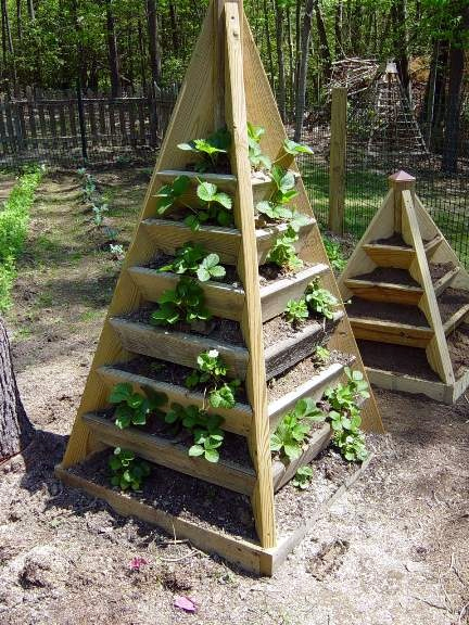 This Type Of Garden Would Be Great For Smaller Plants Like Lettuce And  Strawberries. Plans For This Structure Can Be Found On ...