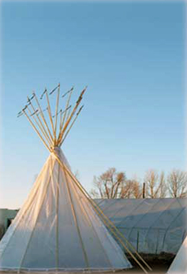 A Tipi Greenhouse