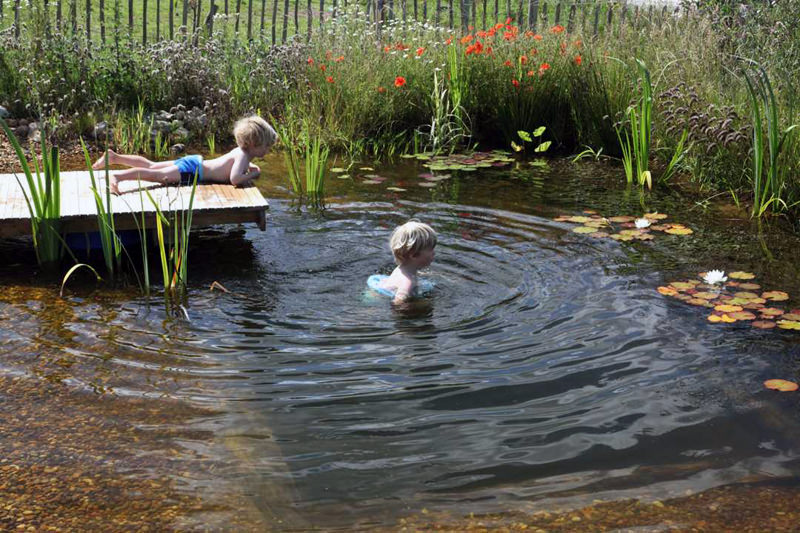 Why i love natural swimming pools and how to build one for Plunge pool design uk