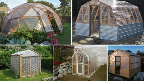 10 Easy DIY Greenhouse Plans  They re Free     Walden Labs 10 Easy DIY Greenhouse Plans  They re Free