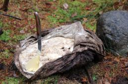 DIY Bog Butter: A Gastronomic Perspective