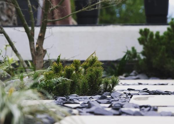 Walden Paysage La Tronche Jardin