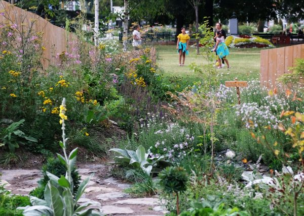Walden Paysage Albertville Jardin Alpestre