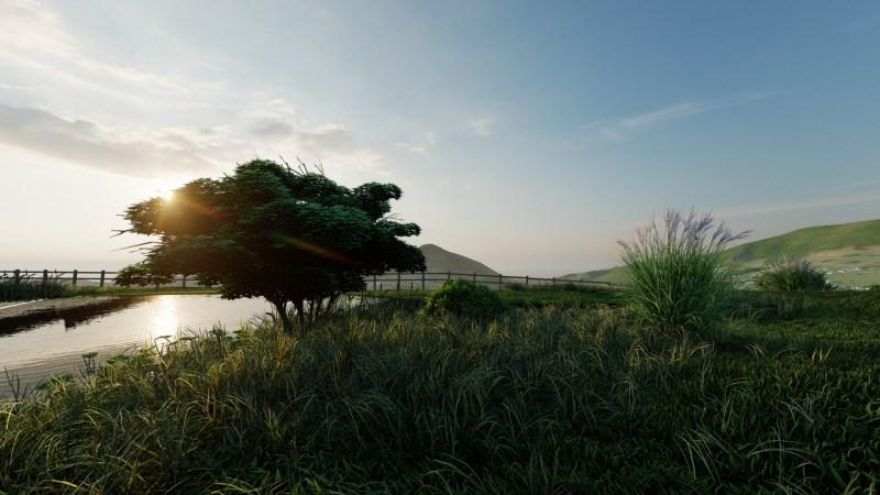 Walden Paysage Jardin Baignade Naturelle