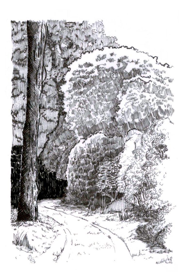 Walden Paysage Trévarez
