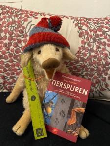 Frischling Wilma Wusel sitzt in einer Wohnung auf dem Sofa und zeigt ihre Weihnachtsgeschenke.