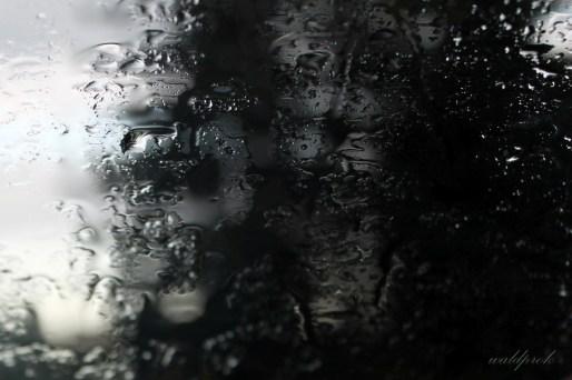 rain004