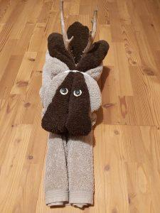Ich bin dein Handtuch!