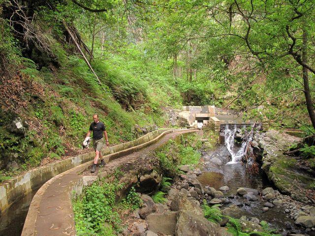 Wandern an der Levada Nova | Waldspaziergang.org