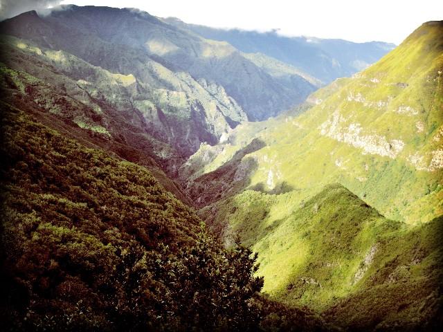 Rosmarin-Levada mit Ausblick | Waldspaziergang.org