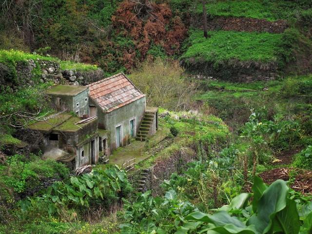 Altes Haus auf Madeira   Waldspaziergang.org