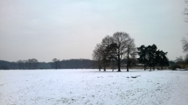 Winterland im Rosental