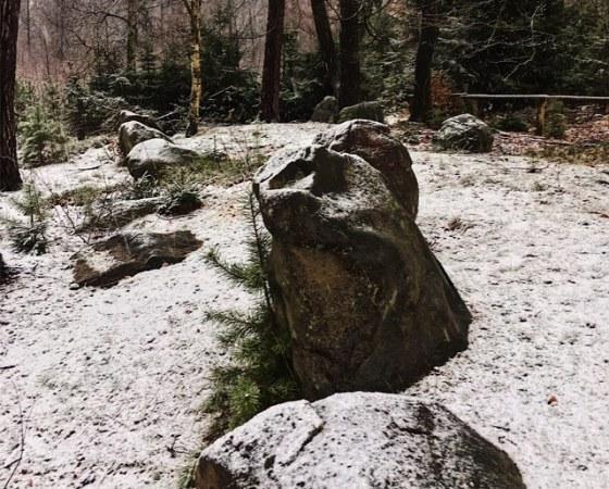 Riesenbett im Winter