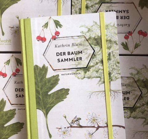 Der Baumsammler von Kathrin Blum