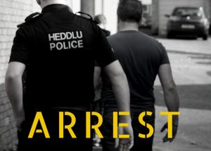 Seven people arrested in connection with Cardiff city centre disorder