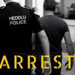 Police make further arrest in relation to Bute Park assault