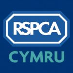 RSPCA Cymru express concern of suspected fox poisoning incident in Cardiff