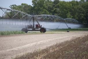 Delaware irrigation